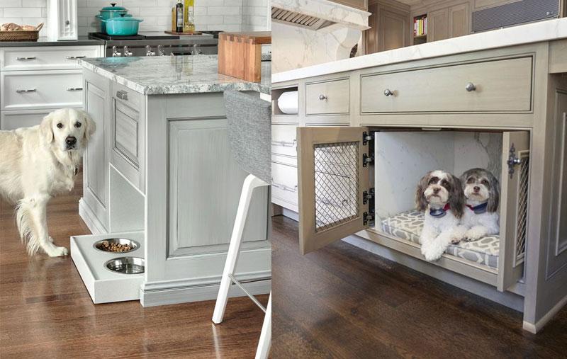 cucine a misura di cane