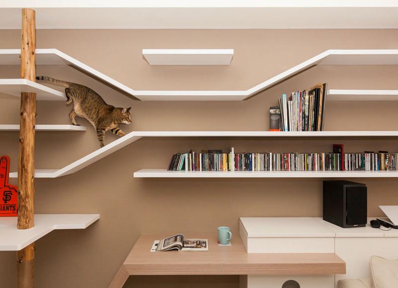 sistema di scaffali libreria di design pensati per il comportamento dei gatti